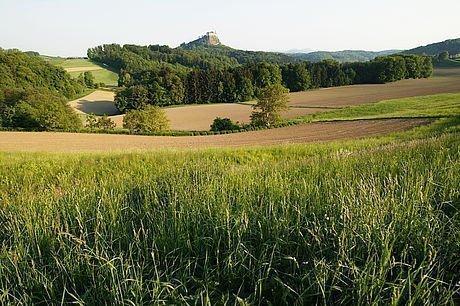 Blick über die Felder auf die Riegersburg bei Graz
