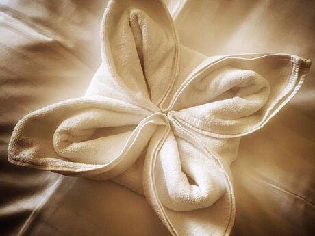Badetuch-Blüte als wundervolles Detail in den Zimmern des Hotel Stoiser Graz