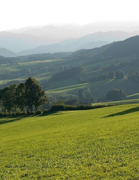 Einmaliges Panorama im Sommer am Grazer Hausberg, dem Schöckl