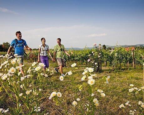 Sportler beim Nordic Walking in der Natur in Graz Umgebung